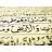Аватар Бойся Аллаха