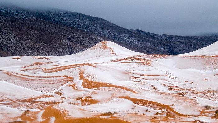 В пустыне Сахара впервые за 37 лет выпал снег (фото)