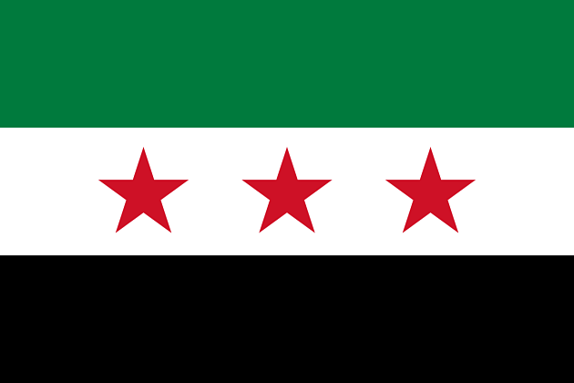 Вооружённая оппозиция Сирии не желает ехать на съезд вСочи