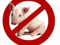 Свинина как бомба замедленного действия