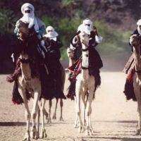 Восстание туарегов как продолжение ливийской войны