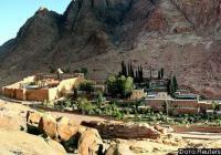 Бедуины отпустили американских туристок