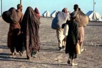 Афганские беженцы возвращаются на родину из Пакистана