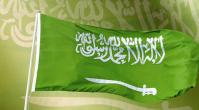 Саудовская Аравия против новых доменных зон