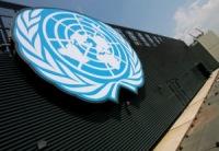 Совбез ООН дал 45 дней на подготовку ввода войск в Мали