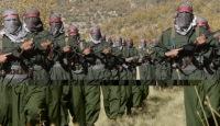 Курдская карта в большой игре