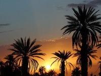 Пророк Мухаммад – наилучший советчик и психолог
