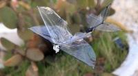 Израильская компания разработала беспилотник-бабочку