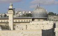 Эрдоган сделает для мечети аль-Акса все возможное, уверен шейх Раед Салах