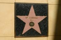 Звезда Мухаммада Али