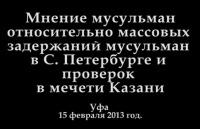Мнение о массовом задержании мусульман в С-Петербурге