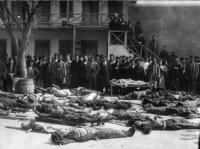 Петиция о признании геноцида мусульман