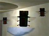 Вездесущие и смертоносные: ВВС США показали на ВИДЕО микробеспилотники в виде птиц и жуков