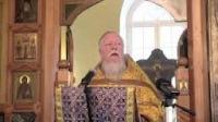 """Протоиерей Дмитрий Смирнов:""""Будущее за мусульманами. Они ближе ко Христу, чем современные крещенные"""""""