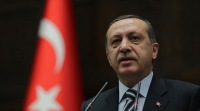 США и Израиль критикуют Эрдогана за сравнение сионизма с фашизмом