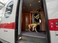 В Германии в поезде поймали лже-Путина с фальшивыми правами