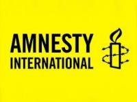 Amnesty International: Путин открыл охоту на ведьм