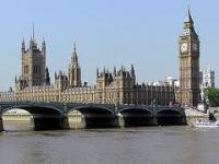 Петиция о выселении британских погромщиков набрала нужное число голосов