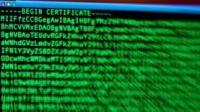 Сертификаты безопасности сайтов ЦРУ и MI6 подделал хакер-иранец