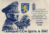 Украинские националисты разделяют отношение Брейвика к мигрантам