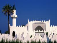 Еврей: О защите ислама и арабов