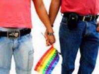Пропоганду гомосексуализма надо запретить (мнения парламентариев)