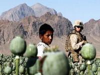 ООН обнародовала доклад об афганской наркоугрозе