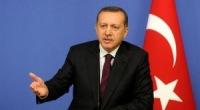 Погромы в Турции – дело рук внутренних и внешних врагов