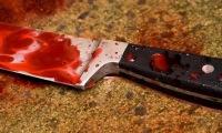 В Москве были убиты и расчленены трое студентов с Кавказа