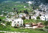 Палестинские фермеры отсудили свою землю у Израиля
