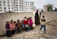 Сирийским мусульманам разрешили на праздник есть кошек и собак