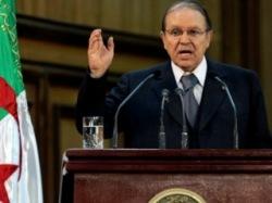 Алжир: исламская партия бойкотирует президентские выборы