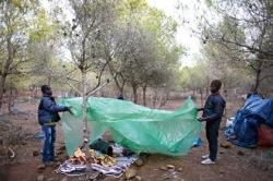 Африканские мигранты прорвали испанскую границу