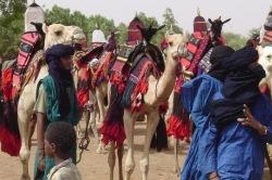 В Мали хладнокровно убиты тридцать туарегов