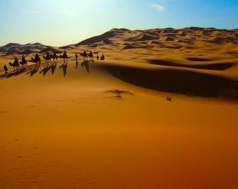 Неудавшаяся революция в Марокко или как марокканские власти «арабскую весну» перехитрили (часть первая)