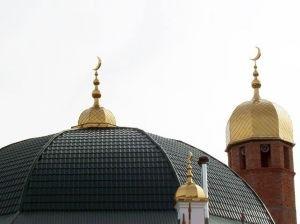 Властям Ставрополья напомнили о существовании Конституции
