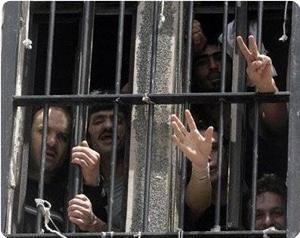 «Пустые желудки» против сионистского беспредела: 50 дней противостояния