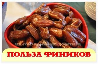 Финики – один из самых полезных фруктов в мире