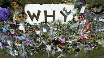"""Артемий Троицкий: """"что пассажирский самолет сбили пророссийские боевики, мало у кого вызывает сомнения"""""""