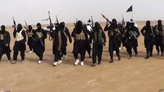 Исламское государство потеряло 30% подконтрольной территории Ирака
