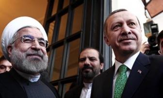 Непрошеный гость из Турции