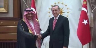 Президент Турции встретился с главой МВД Саудовской Аравии