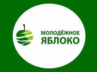 """""""Молодежное Яблоко"""": оппозиция пронизана исламофобией"""