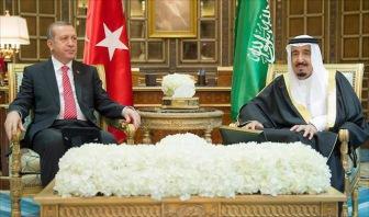 России в Сирии  мешает Турция  и Саудовская Аравия