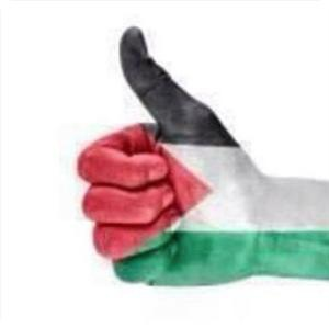 Беспрецедентная инициатива молодых палестинцев