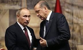 Президент Турции обсудит с Путиным проблему Сирии на саммите Большой двадцатки