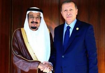 Саудовская Аравия и Катар поддержали Турцию в конфликте с Россией