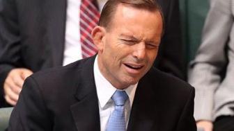 Австралия: экс-премьеру досталось за исламофобию