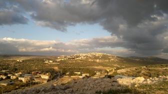 Сионисты - арабам: пряник и кнут