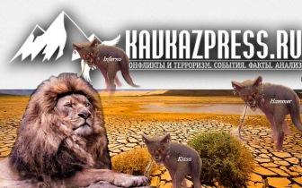 Kavkazpress необходим, как бывает необходимо рвотное